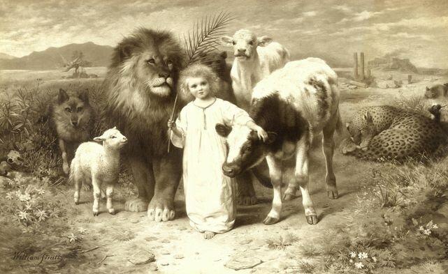"""""""I będzie wilk gościem jagnięcia, a lampart będzie leżał obok koźlęcia, cielę i lwiątko razem paść się będą, a mały chłopiec je poprowadzi"""" - Proroctwo Izajasza 11:6"""