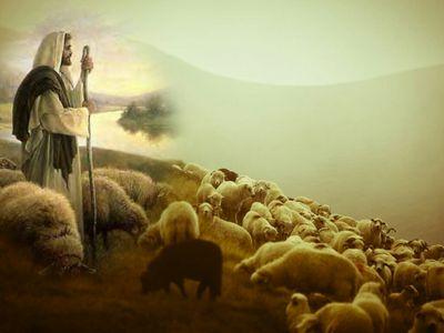 jezus-dobry-pasterz