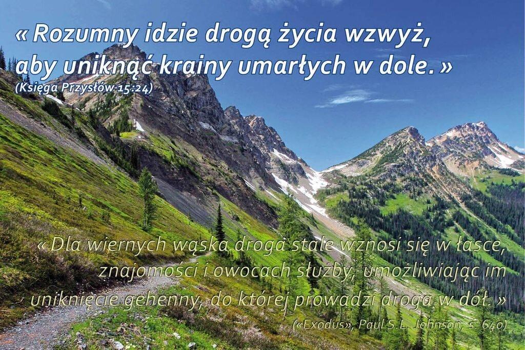 ksiegaprzyslow-15-24