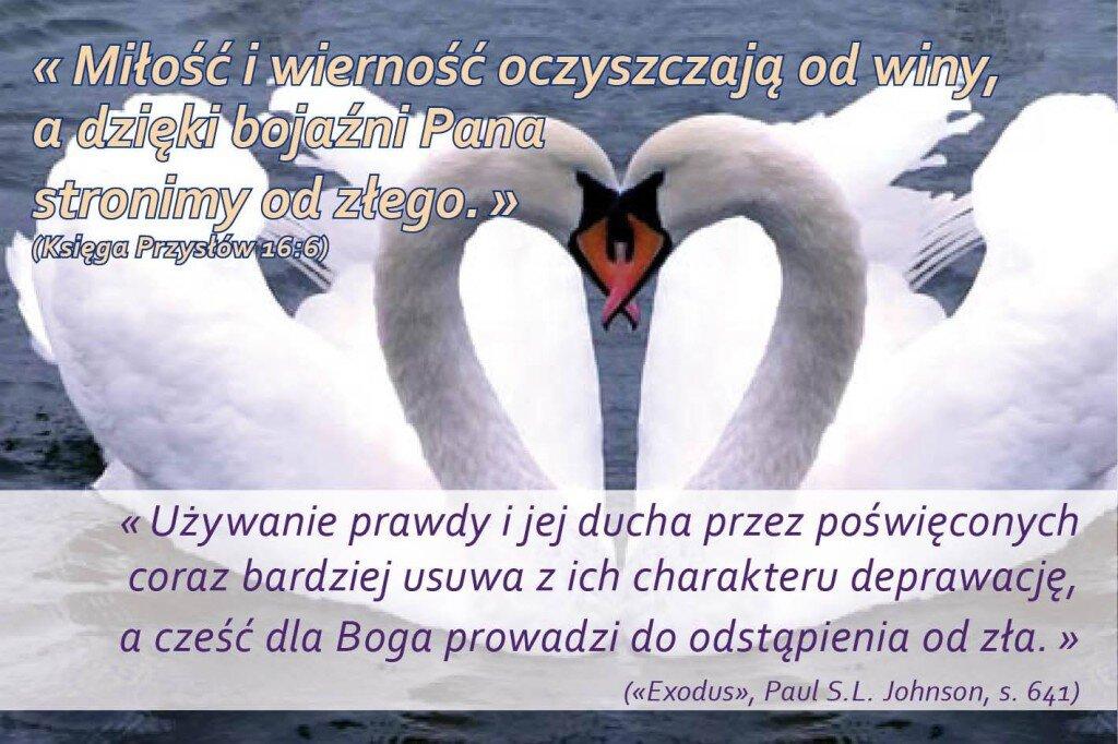 przyslow-16-6